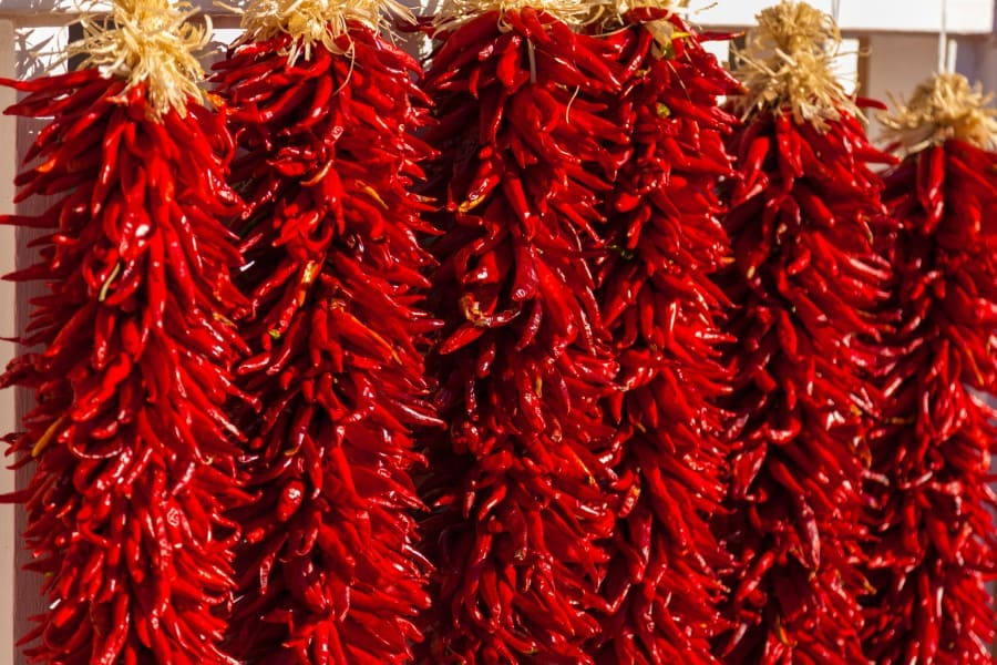 Photo of thousands of red chili peppers strung in a ristra