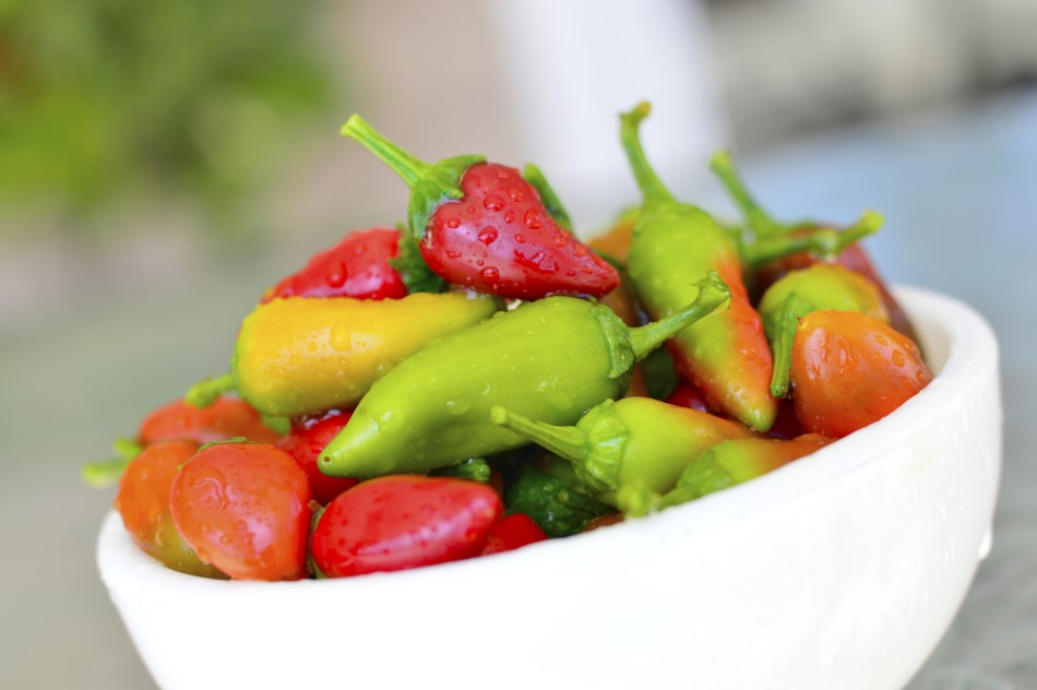 Photo of Fresno chili peppers in a white bowl ranging in color from green, yellow, orange, and red